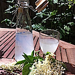 Elderflower champagne - recipe by Adrienne Wyper