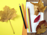 Autumn leaves, pencils and paper