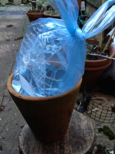 Flowerpot ice lantern in the making